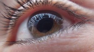 [image: close-up of an eye]
