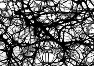 [image: neuron network]