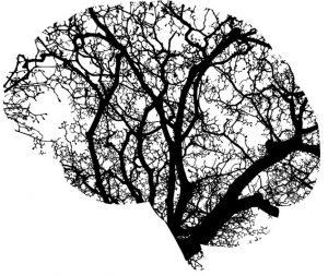 [image: tree shaped like a brain]
